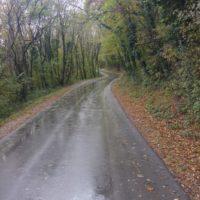pot nas vodi naprej proti Lokavcu
