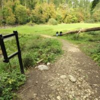 kolesarska-pot-jezerko-rakov-skocjan-table_800x600