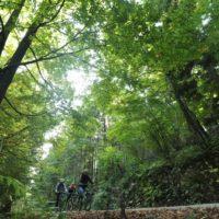 kolesarska-pot-kacji-pastir-teren_800x600