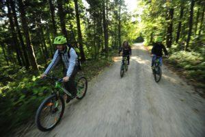 kolesarska-pot-kosec-na-progi_800x600
