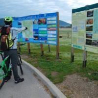 kolesarska-pot-zaba-informiranje_800x600