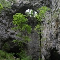 kolesarska-pot-medved-mali-naravni-most_800x600
