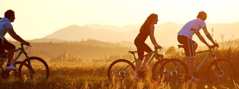 kolesarska-pot-zaba-kupikolo.si-800x300