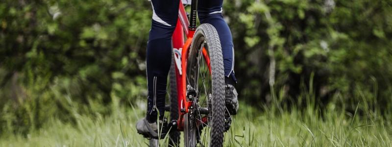 kolesarska-pot-coprnica-kupikolo.si-800x300