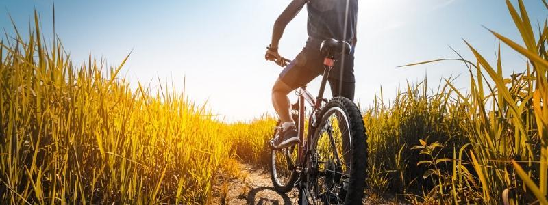 kolesarska-pot-srna-kupikolo.si-800x300