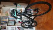 Cannondale Top stone 1